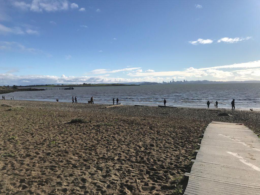 People walking along Albany Beach